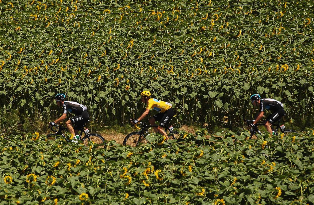 Le Tour de France 2012 - Stage Fifteen