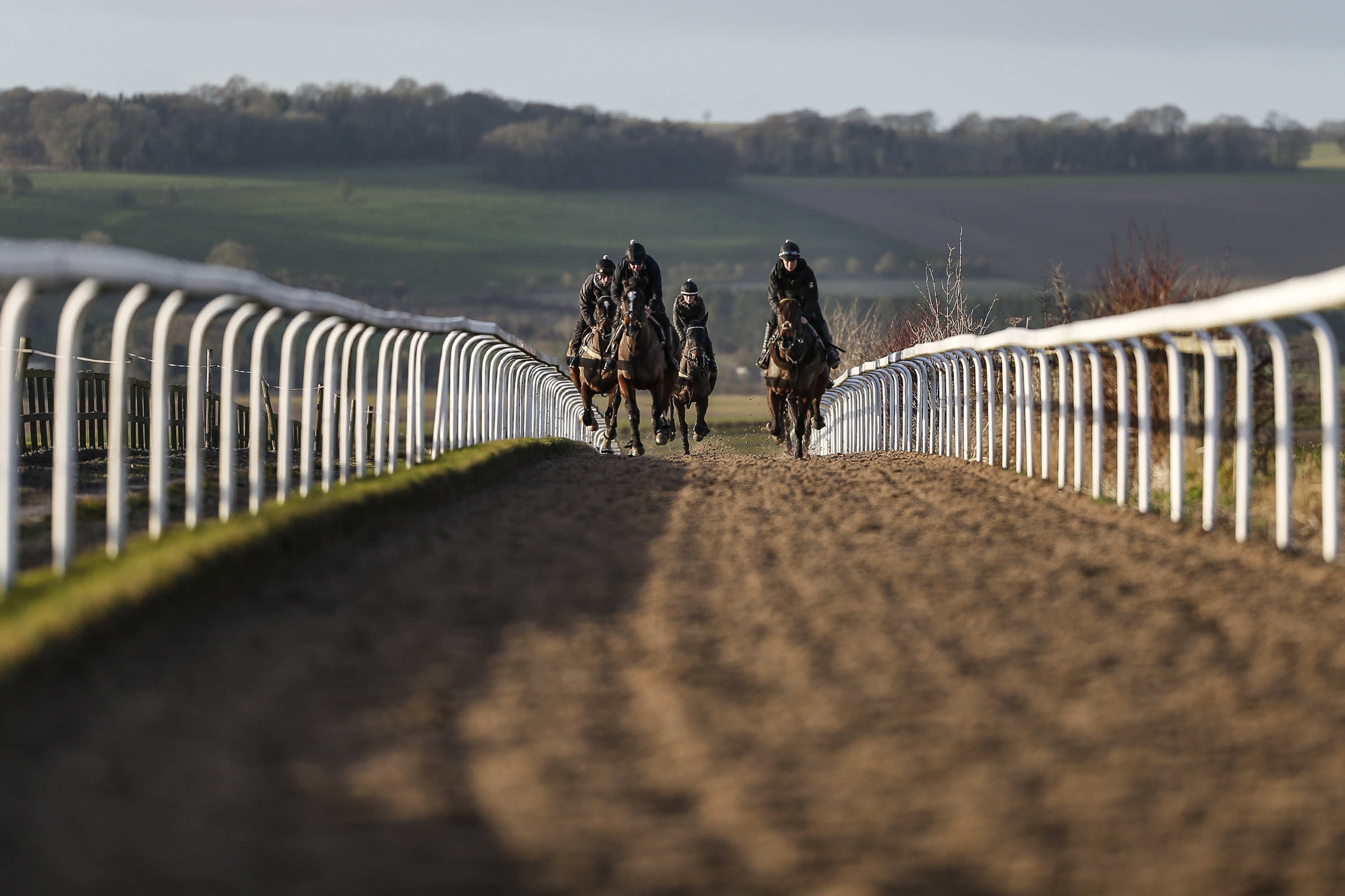 LAMBOURN, ENGLAND - JANUARY 05: Racehorse make their way up the Mandown gallops from Warren Greatrexâs Uplands yard on January 5, 2018 in Lambourn, England. (Photo by Alan Crowhurst/Getty Images)
